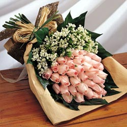 send 19 Pink Roses to china