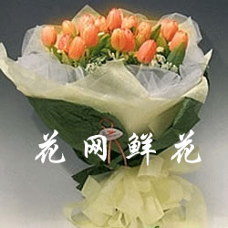 china tulip,tulip delivery china,send tulip to china