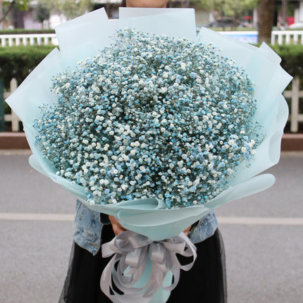 send blue baby breath to china